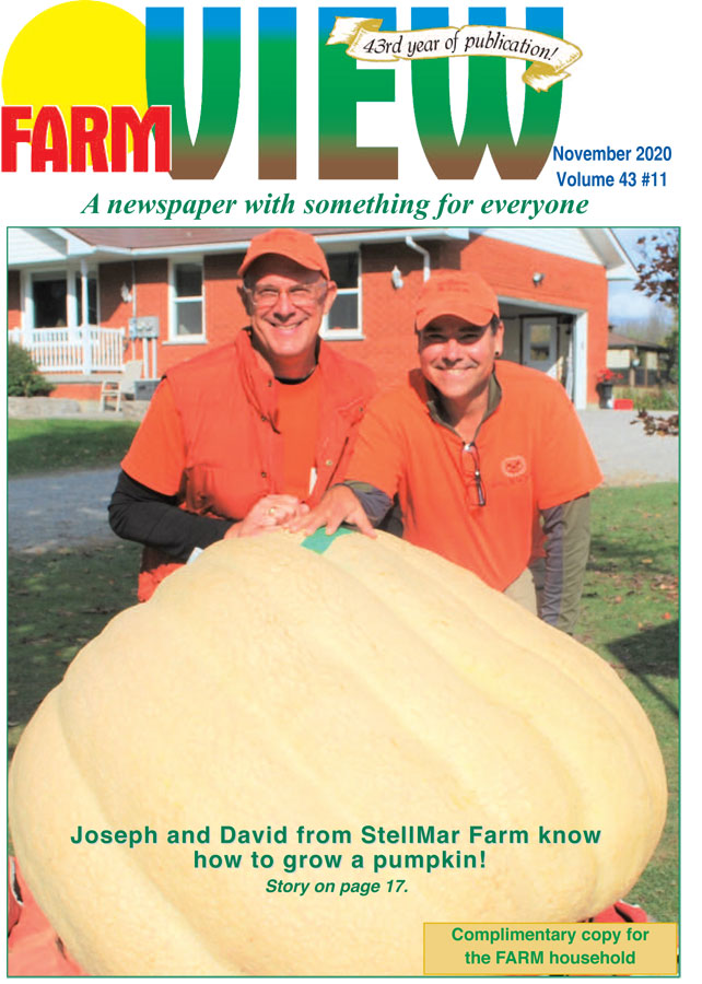 2020 November Farmview