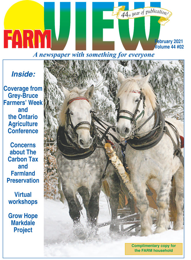 February 2021 Farmview Online